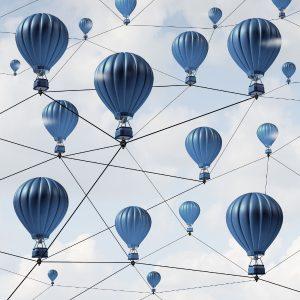 Network Connection Success